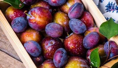 Plum: Benefits And Harm To Health