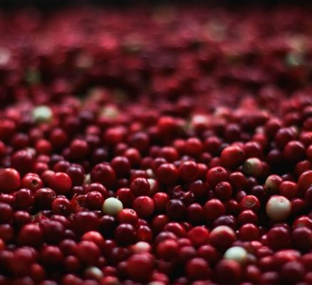 Cranberry Benefits and Nutrition: 7 Healthy Reasons To Eat More